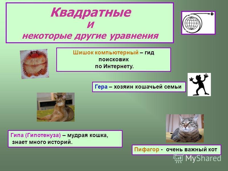 Квадратные И некоторые другие уравнения Пифагор - очень важный кот Гипа (Гипотенуза) – мудрая кошка, знает много историй. Шишок компьютерный – гид поисковик по Интернету. Гера – хозяин кошачьей семьи