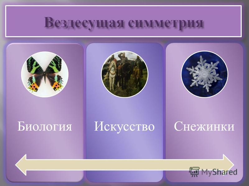 Биология ИскусствоСнежинки