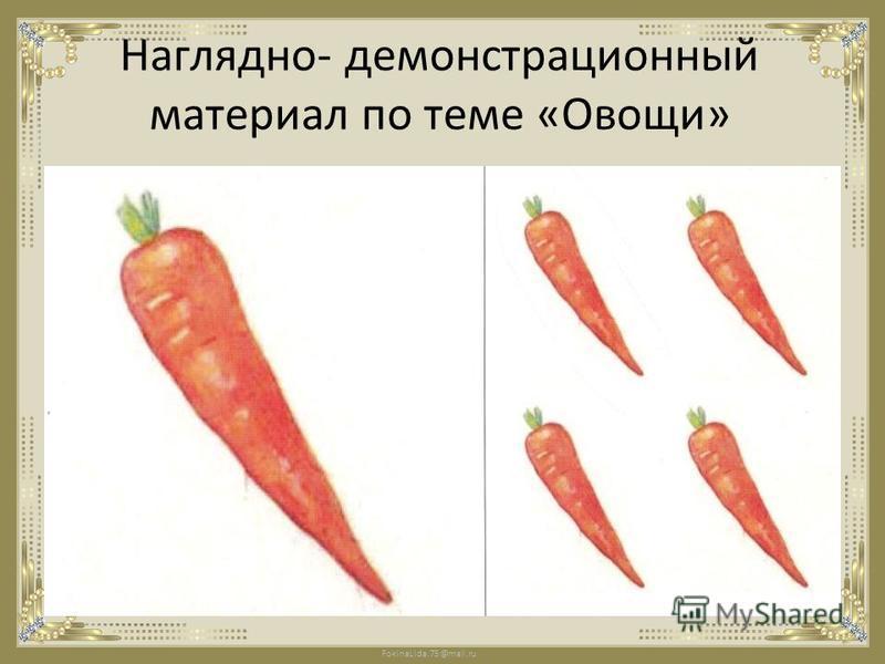 FokinaLida.75@mail.ru Наглядно- демонстрационный материал по теме «Овощи»