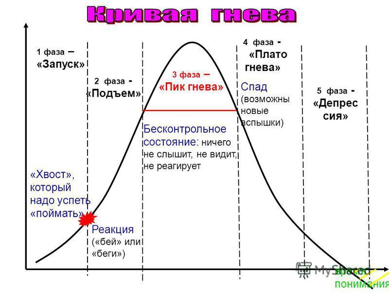 1 фаза – «Запуск» 2 фаза - «Подъем» 3 фаза – «Пик гнева» 4 фаза - «Плато гнева» 5 фаза - «Депрес сия» «Хвост», который надо успеть «поймать» Реакция («бей» или «беги») Бесконтрольное состояние: ничего не слышит, не видит, не реагирует Спад (возможны