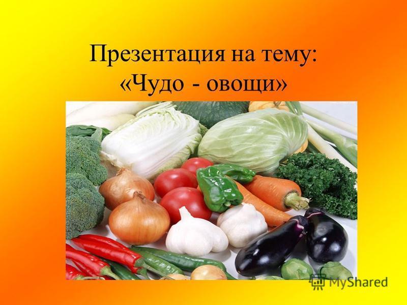 Презентация на тему: «Чудо - овощи»