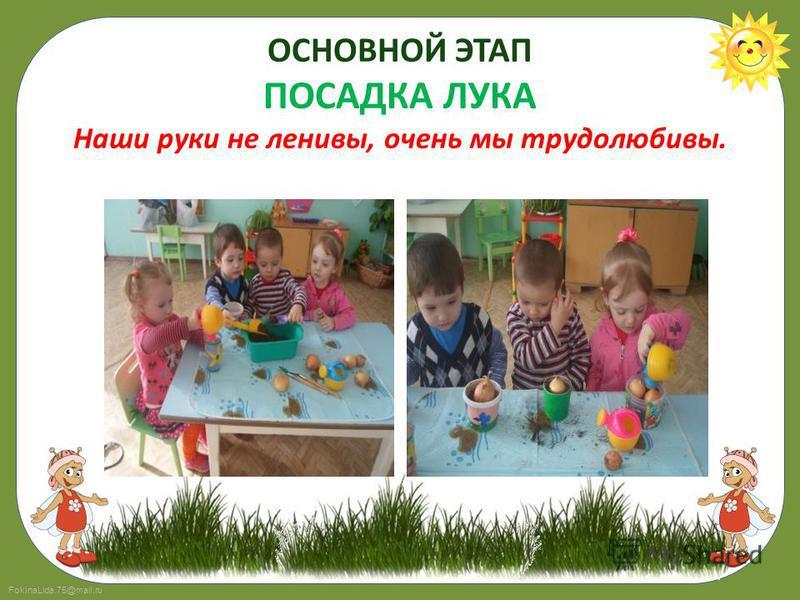 FokinaLida.75@mail.ru ОСНОВНОЙ ЭТАП ПОСАДКА ЛУКА Наши руки не ленивы, очень мы трудолюбивы.
