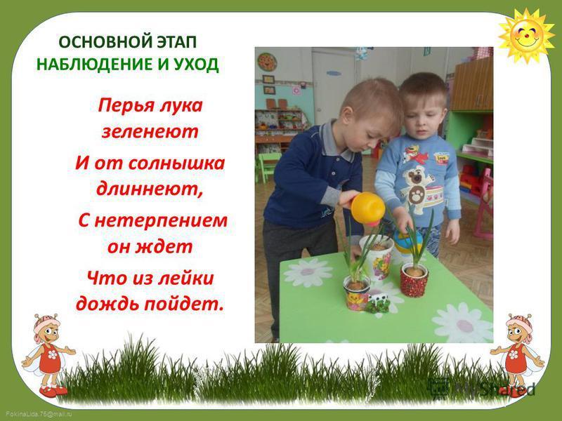 FokinaLida.75@mail.ru ОСНОВНОЙ ЭТАП НАБЛЮДЕНИЕ И УХОД Перья лука зеленеют И от солнышка длиннеют, С нетерпением он ждет Что из лейки дождь пойдет.