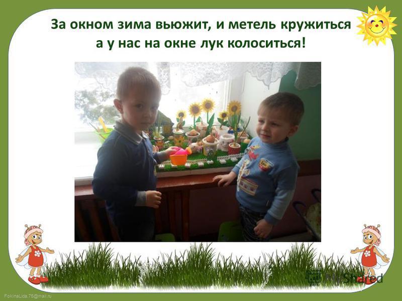 FokinaLida.75@mail.ru За окном зима вьюжит, и метель кружиться а у нас на окне лук колоситься!
