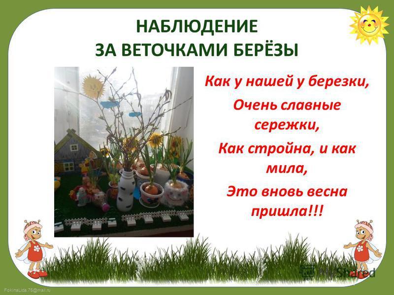 FokinaLida.75@mail.ru НАБЛЮДЕНИЕ ЗА ВЕТОЧКАМИ БЕРЁЗЫ Как у нашей у березки, Очень славные сережки, Как стройна, и как мила, Это вновь весна пришла!!!