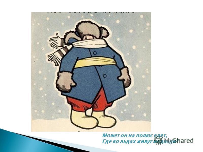 Может он на полюс едет, Где во льдах живут медведи?