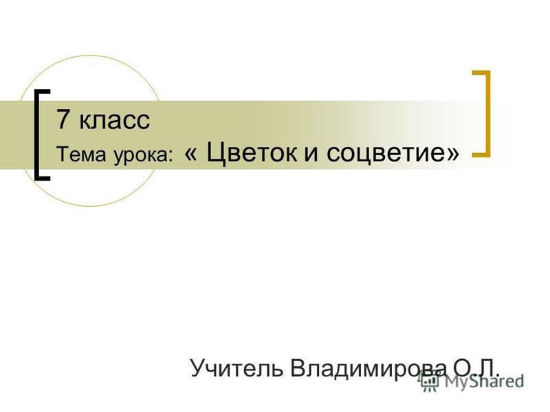 7 класс Тема урока: « Цветок и соцветие» Учитель Владимирова О.Л.