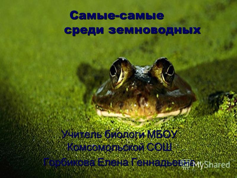 Самые-самые среди земноводных Учитель биологи МБОУ Комсомольской СОШ Горбикова Елена Геннадьевна
