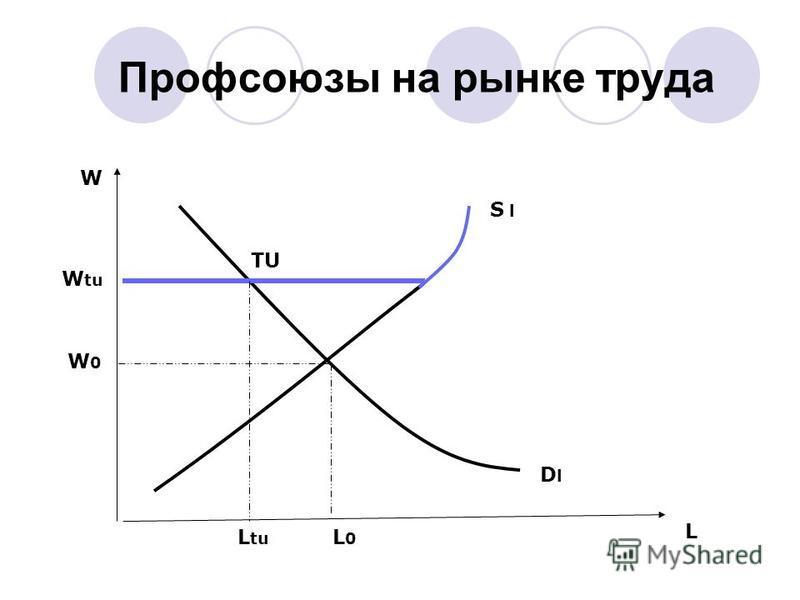 Профсоюзы на рынке труда L W L0L0 W0W0 L tu W tu TU S l DlDl