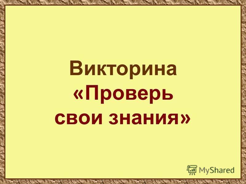 41 Викторина « Проверь свои знания »