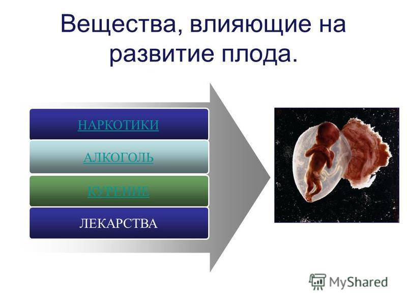 Вещества, влияющие на развитие плода. КУРЕНИЕ НАРКОТИКИ АЛКОГОЛЬ ЛЕКАРСТВА