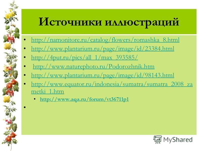 Источники иллюстраций http://namonitore.ru/catalog/flowers/romashka_8. html http://www.plantarium.ru/page/image/id/23384. html http://4put.ru/pics/all_1/max_393585/ http://www.naturephoto.ru/Podorozhnik.htm http://www.plantarium.ru/page/image/id/9814