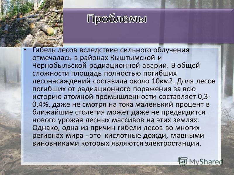 Гибель лесов вследствие сильного облучения отмечалась в районах Кыштымской и Чернобыльской радиационной аварии. В общей сложности площадь полностью погибших лесонасаждений составила около 10 км 2. Доля лесов погибших от радиационного поражения за всю
