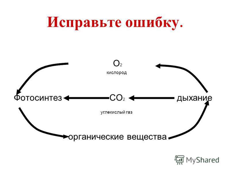 Исправьте ошибку. О 2 кислород Фотосинтез СО 2 дыхание углекислый газ органические вещества