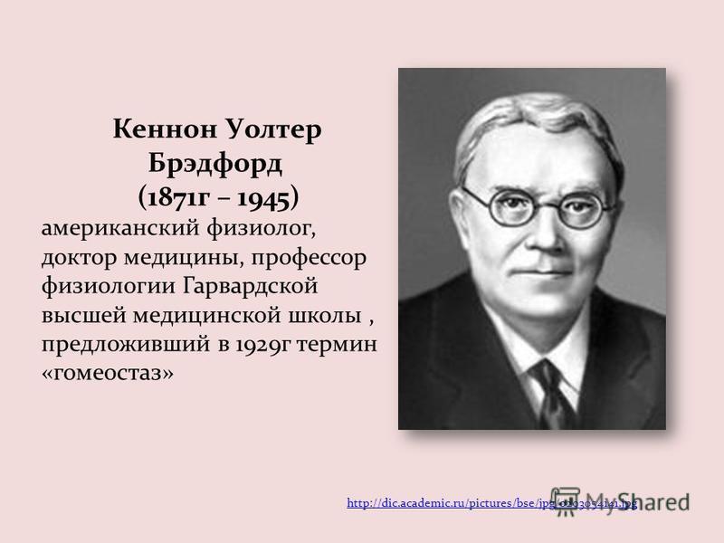 Кеннон Уолтер Брэдфорд (1871 г – 1945) американский физиолог, доктор медицины, профессор физиологии Гарвардской высшей медицинской школы, предложивший в 1929 г термин «гомеостаз» http://dic.academic.ru/pictures/bse/jpg/0203054141.jpg