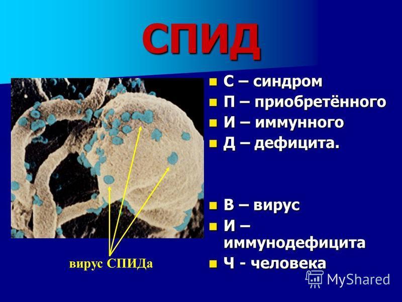 СПИД С – синдром С – синдром П – приобретённого П – приобретённого И – иммунного И – иммунного Д – дефицита. Д – дефицита. В – вирус В – вирус И – иммунодефицита И – иммунодефицита Ч - человека Ч - человека вирус СПИДа