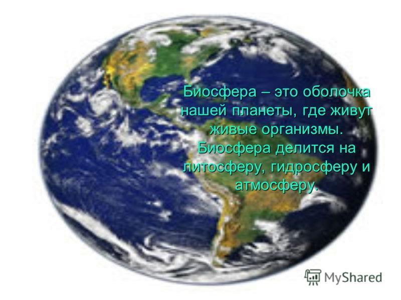 Биосфера – это оболочка нашей планеты, где живут живые организмы. Биосфера делится на литосферу, гидросферу и атмосферу.