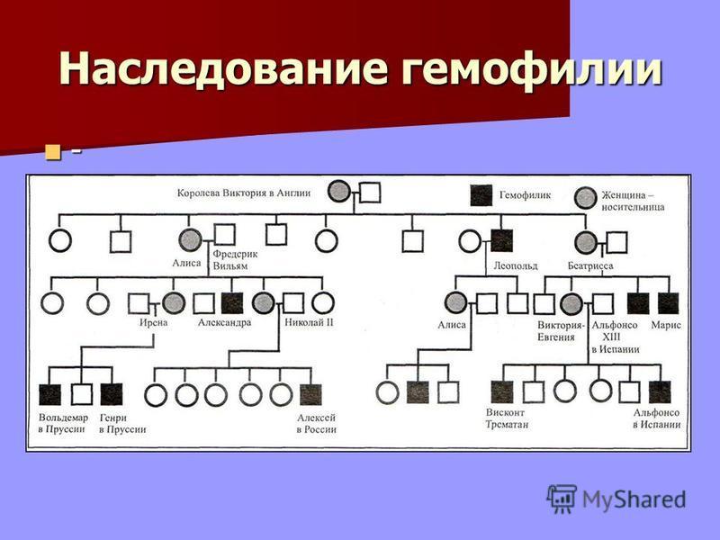 Наследование гемофилии -