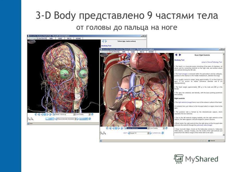 3-D Body представлено 9 частями тела от головы до пальца на ноге