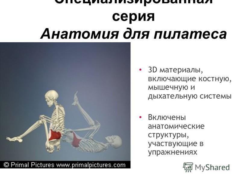 Специализированная серия Анатомия для пилатеса 3D материалы, включающие костную, мышечную и дыхательную системы Включены анатомические структуры, участвующие в упражнениях