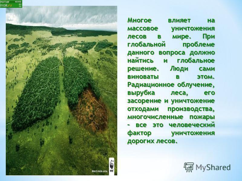 Многое влияет на массовое уничтожения лесов в мире. При глобальной проблеме данного вопроса должно найтись и глобальное решение. Люди сами виноваты в этом. Радиационное облучение, вырубка леса, его засорение и уничтожение отходами производства, много