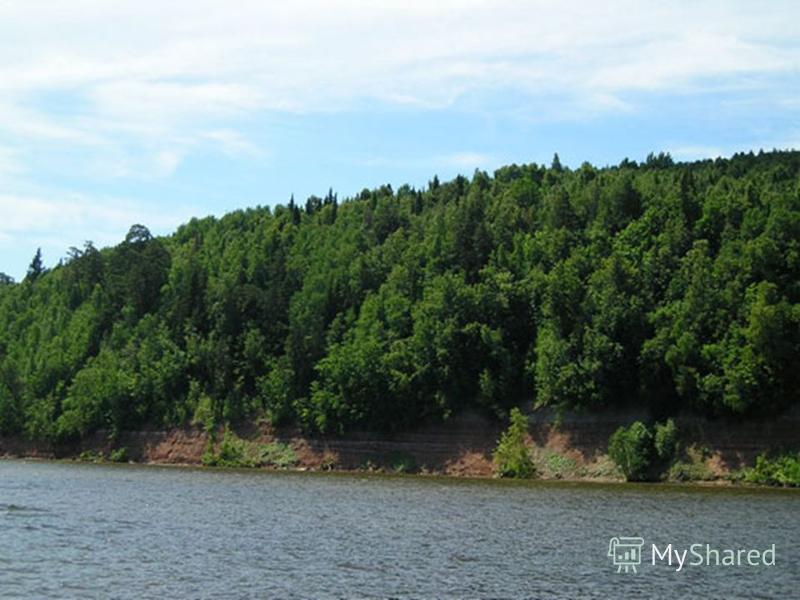 Природные национальные парки Национальный парк – один из видов охраняемой территории, где мало изменены природные условия и отдых строго контролируется. Национальный парк – один из видов охраняемой территории, где мало изменены природные условия и от
