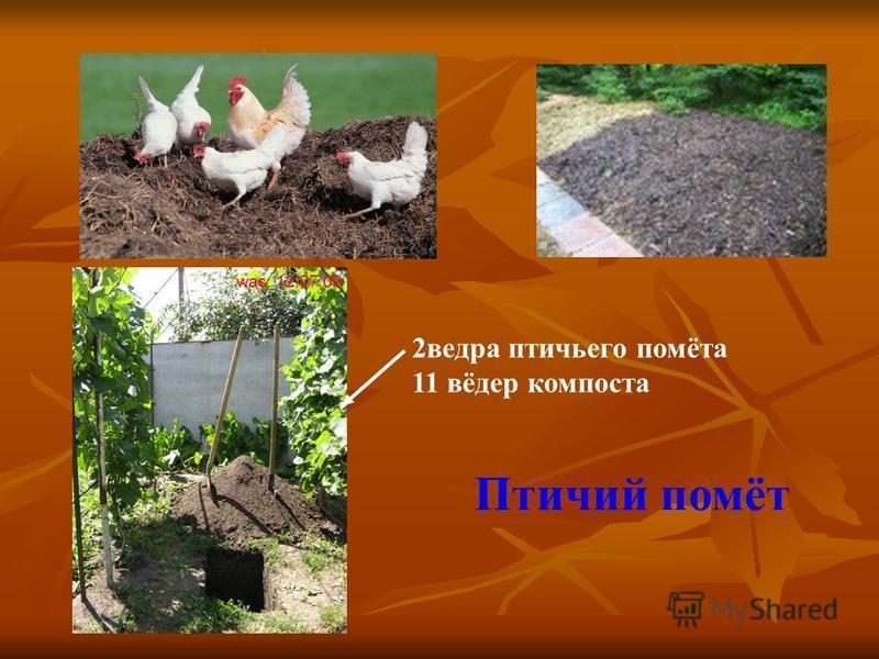 2 ведра птичьего помёта 11 вёдер компоста Птичий помёт