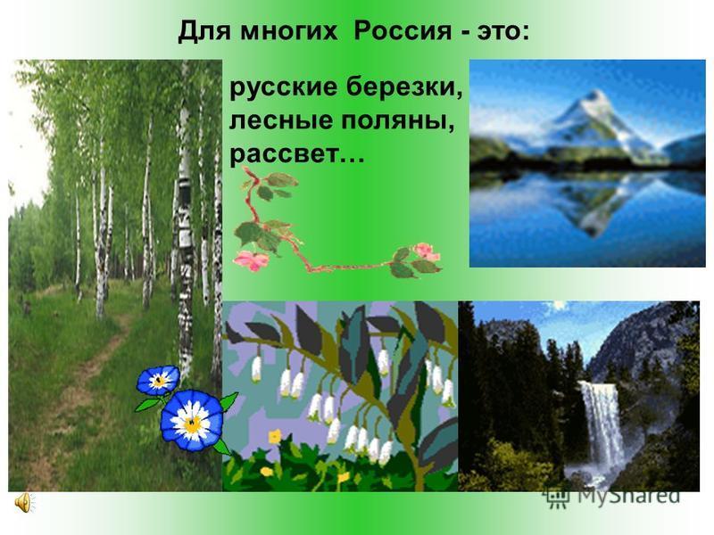 Для многих Россия - это: русские березки, лесные поляны, рассвет…