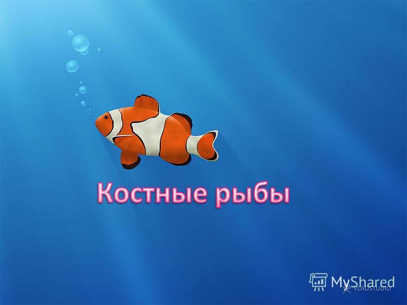 мы знакомы на таджикском