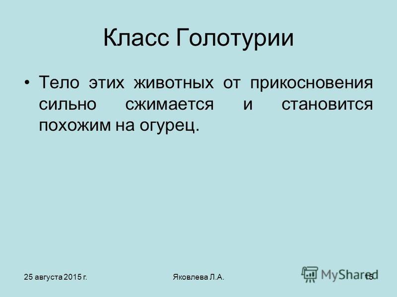 25 августа 2015 г.Яковлева Л.А.15 Класс Голотурии Тело этих животных от прикосновения сильно сжимается и становится похожим на огурец.