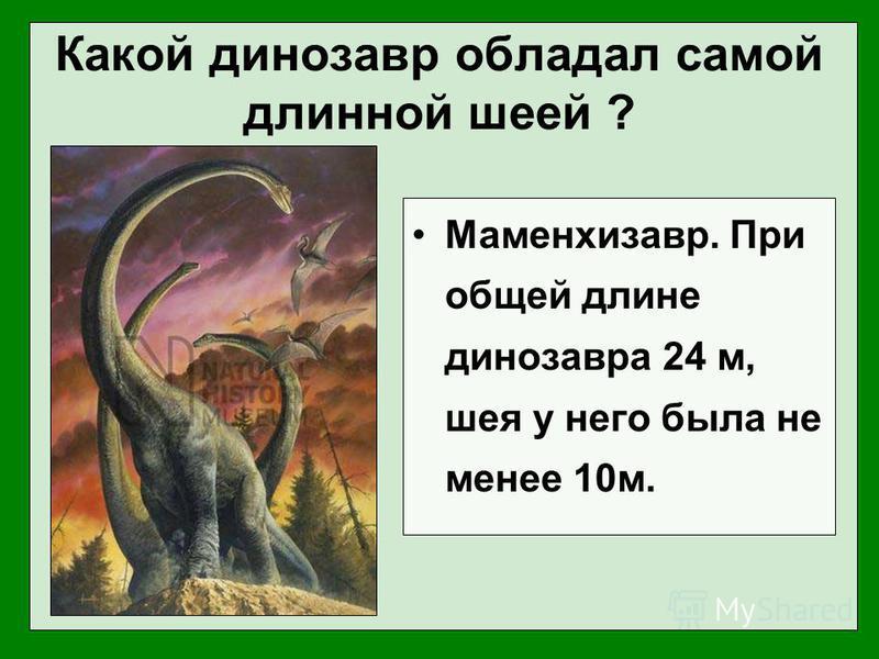 Какой динозавр обладал самой длинной шеей ? Маменхизавр. При общей длине динозавра 24 м, шея у него была не менее 10 м.