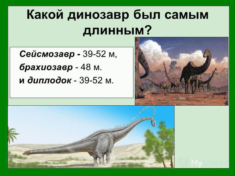 Какой динозавр был самым длинным? Сейсмозавр - 39-52 м, брахиозавр - 48 м. и диплодок - 39-52 м.