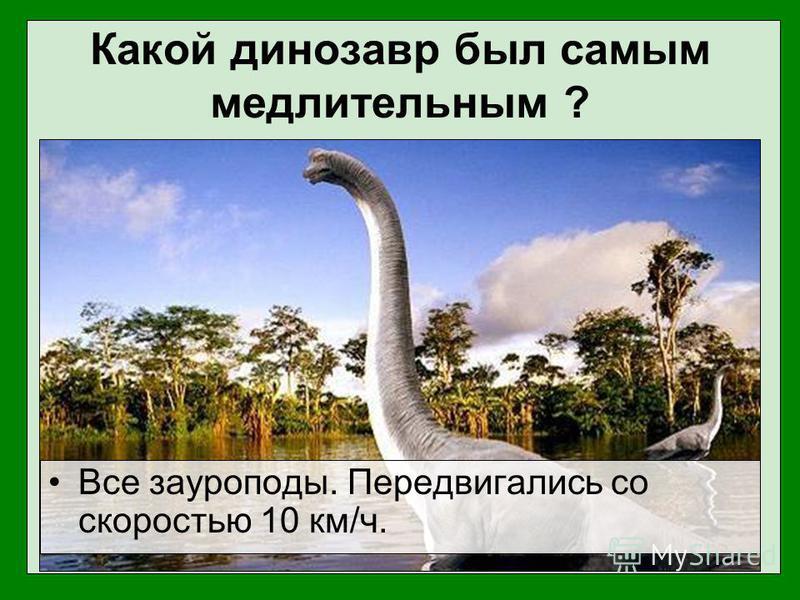 Какой динозавр был самым медлительным ? Все зауроподы. Передвигались со скоростью 10 км/ч.