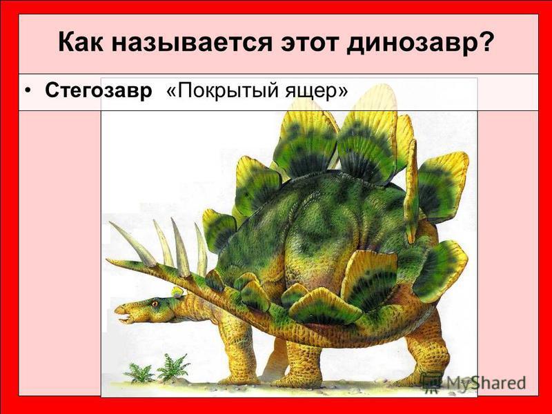 Как называется этот динозавр? Стегозавр «Покрытый ящер»