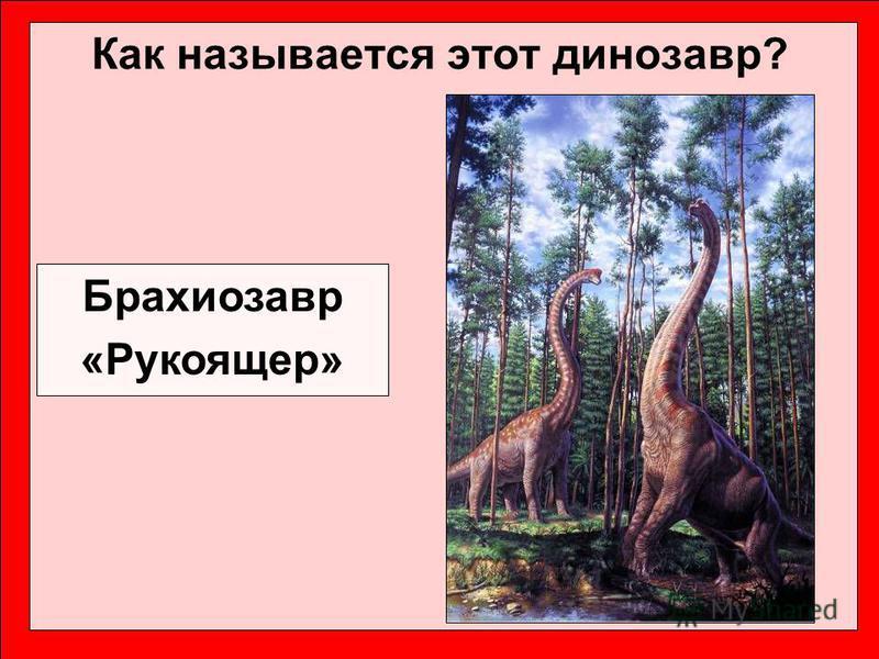 Как называется этот динозавр? Брахиозавр «Рукоящер»