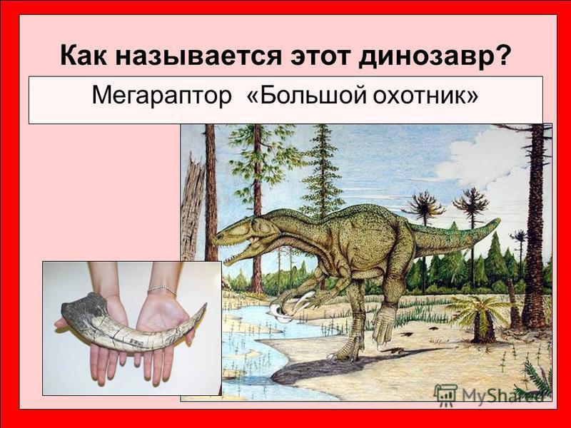 Как называется этот динозавр? Мегараптор «Большой охотник»