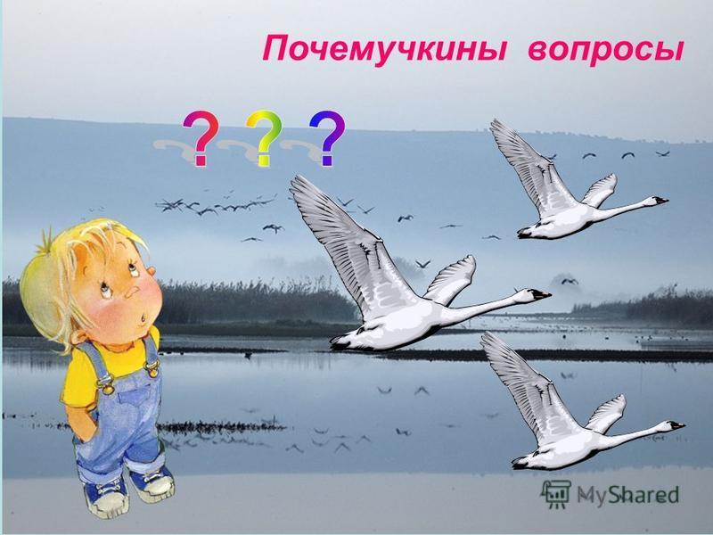 Почемучкины вопросы