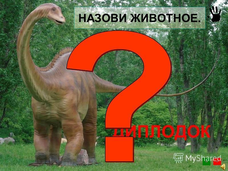 Утконосый ящер или гадрозавр «Олоротитан архаринский» что в переводе с греческого означает «гигантский лебедь из Архары». Амурский динозавр