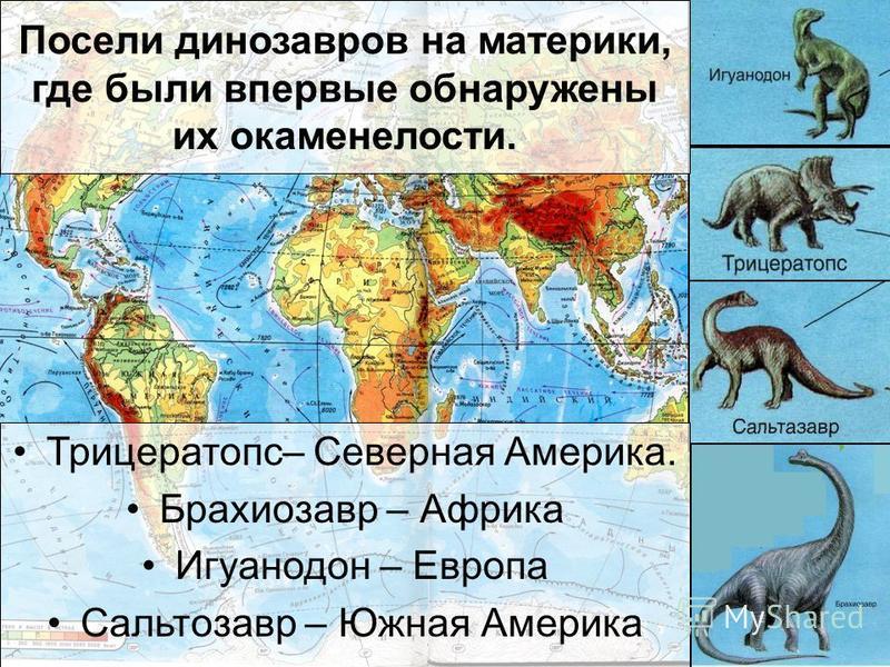 Какой из этих ящеров является травоядным? Зауролоф
