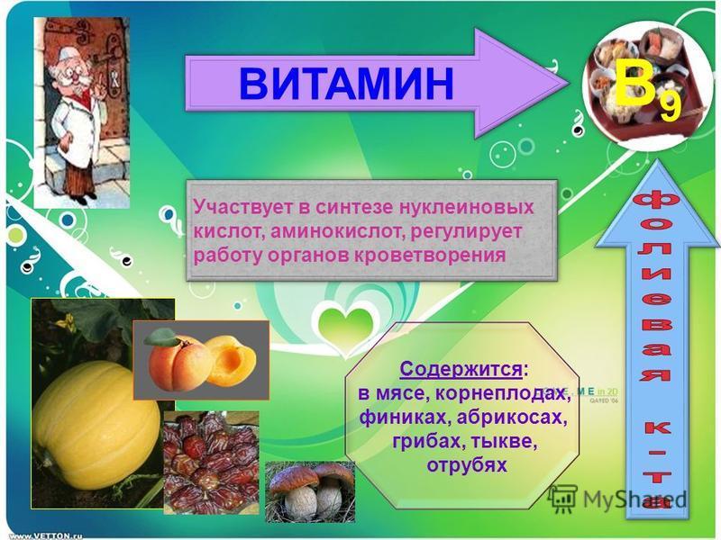 ВИТАМИН B9 Участвует в синтезе нуклеиновых кислот, аминокислот, регулирует работу органов кроветворения Участвует в синтезе нуклеиновых кислот, аминокислот, регулирует работу органов кроветворения Содержится: в мясе, корнеплодах, финиках, абрикосах,