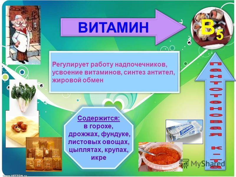 ВИТАМИН B5 Регулирует работу надпочечников, усвоение витаминов, синтез антител, жировой обмен Регулирует работу надпочечников, усвоение витаминов, синтез антител, жировой обмен Содержится: в горохе, дрожжах, фундуке, листовых овощах, цыплятах, крупах