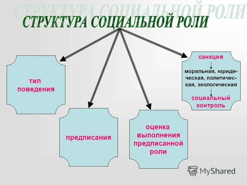 тип победения предписалния оценка выполнения предписалнной роли санкция моральная, юридическая, политическая, экологическая социальный контроль