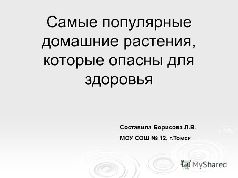 Самые популярные домашние растения, которые опасны для здоровья Составила Борисова Л.В. МОУ СОШ 12, г.Томск