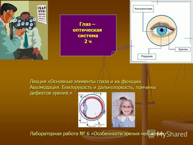 Глаз – оптическая система 2 ч Лекция «Основные элементы глаза и их функции. Аккомодация. Близорукость и дальнозоркость, причины дефектов зрения.» Лабораторная работа 6 «Особенности зрения человека»