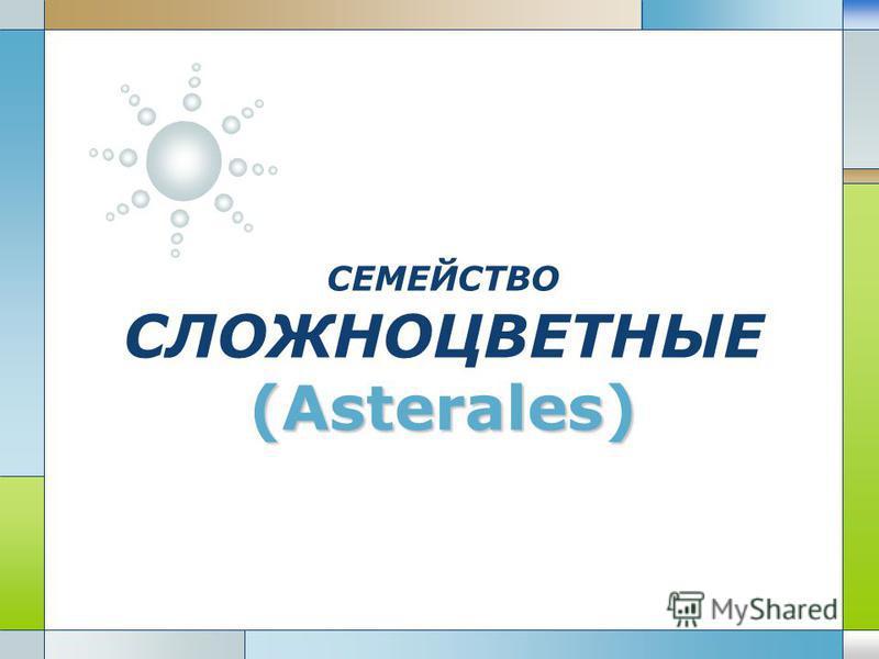 LOGO (Asterales) СЕМЕЙСТВО СЛОЖНОЦВЕТНЫЕ (Asterales)
