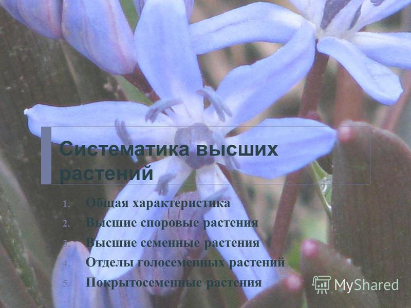 Систематика высших растений 1. Общая характеристика 2. Высшие споровые растения 3. Высшие семенные растения 4. Отделы голосеменных растений 5. Покрытосеменные растения