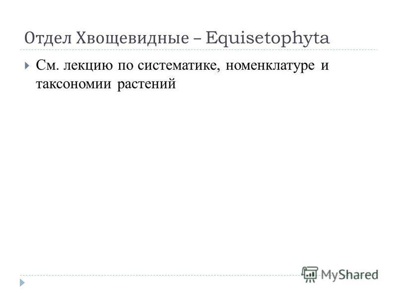 Отдел Хвощевидные – Equisetophyta См. лекцию по систематике, номенклатуре и таксономии растений