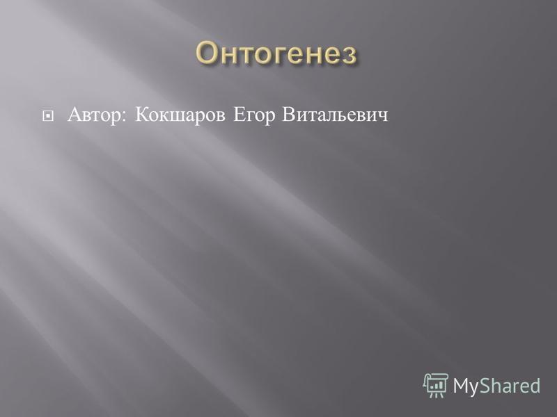 Автор : Кокшаров Егор Витальевич