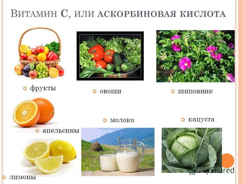 В ИТАМИН С, ИЛИ АСКОРБИНОВАЯ КИСЛОТА фрукты апельсины молоко капуста шиповник лимоны овощи