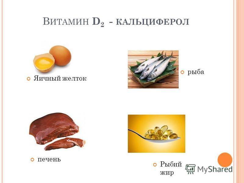 В ИТАМИН D 2 - КАЛЬЦИФЕРОЛ Яичный желток рыба печень Рыбий жир